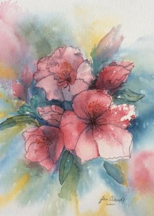 Wild Roses