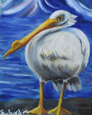 single pelican (1)